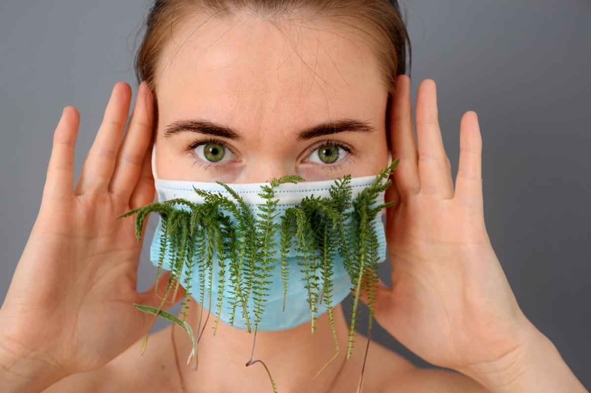 Cannabis skydd mot Coronavirus – Forskning pågår i Kanada och Israel